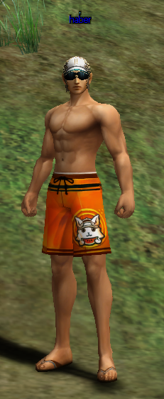 [Image: Beach%20Costume.png]