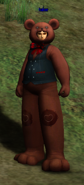 [Image: Bear%20Costume.png]