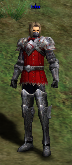 [Image: Guardian%20Armor%20Costume.png]