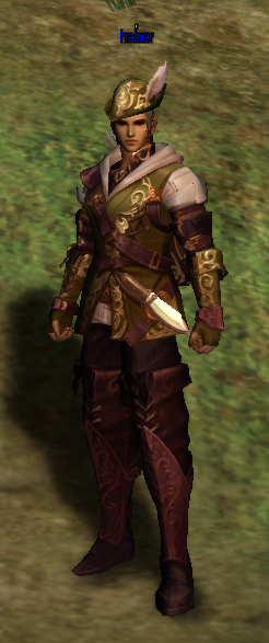 [Image: Robin%20Hoods%20Costume%20Green.png]