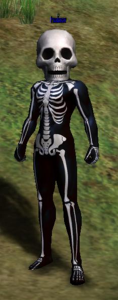 [Image: Skeleton%20Costume.png]